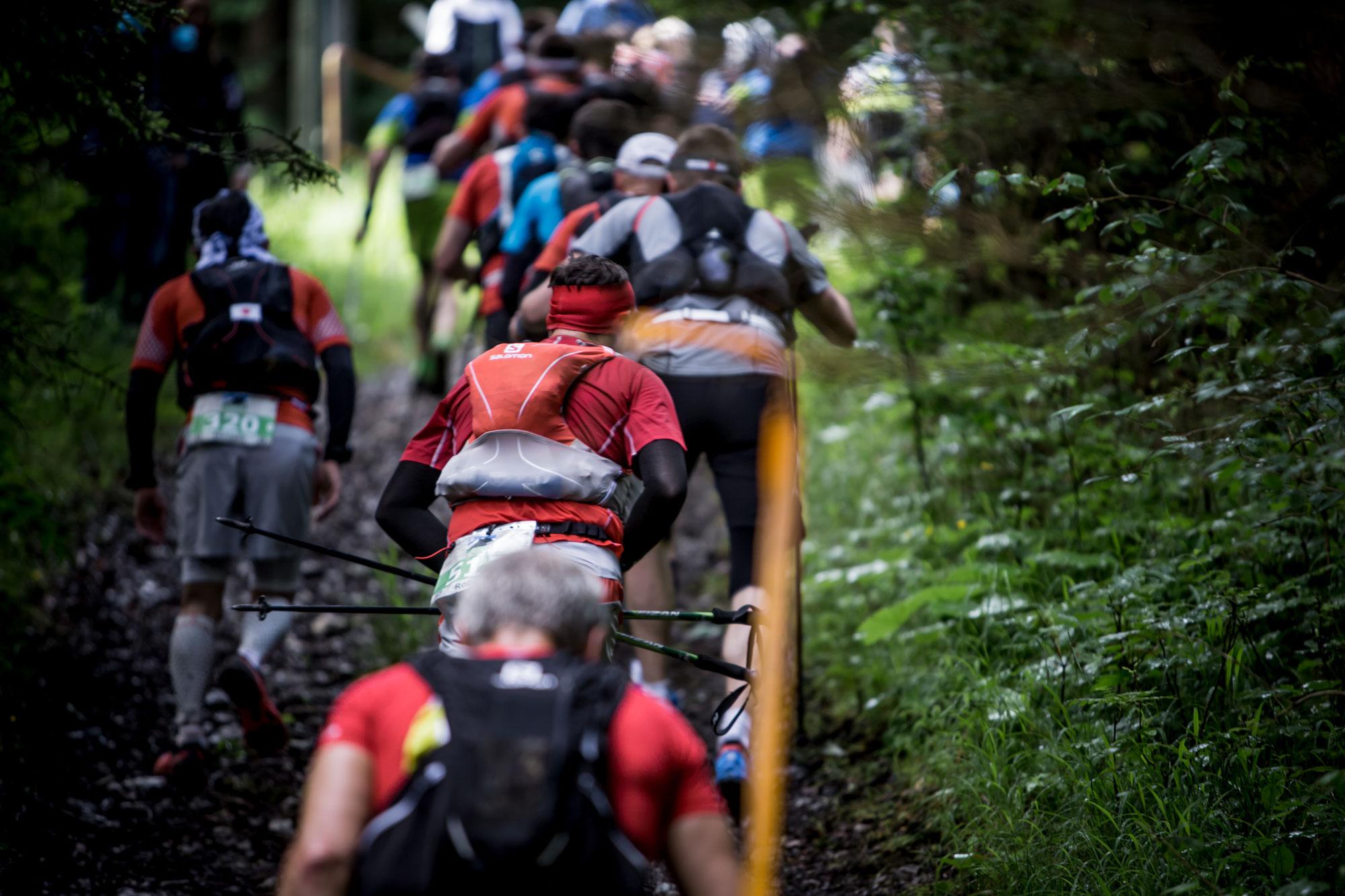 Tree Runner Klettergurt : Trail running basic guide: how to get started