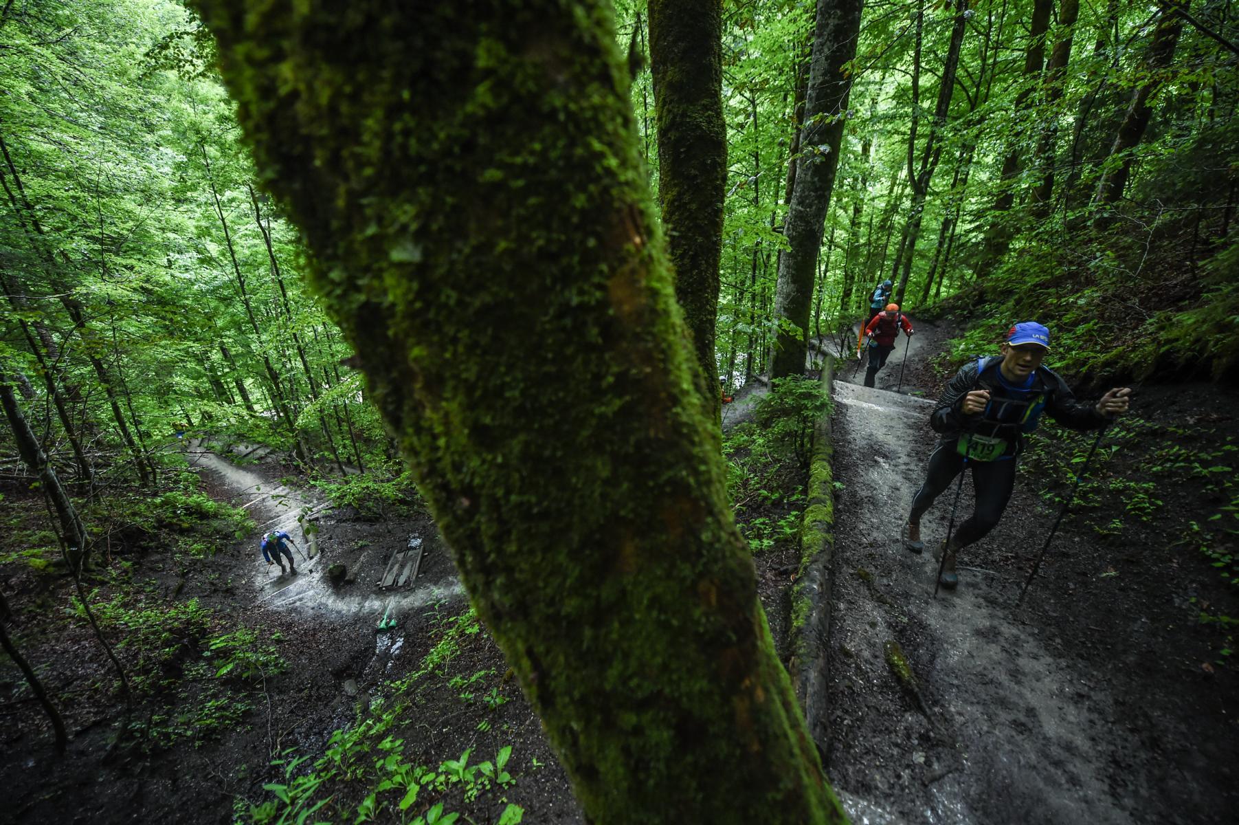Tree Runner Klettergurt : Trailrunning knigge was sind die regeln am trail?